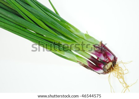 Spring Onion On White