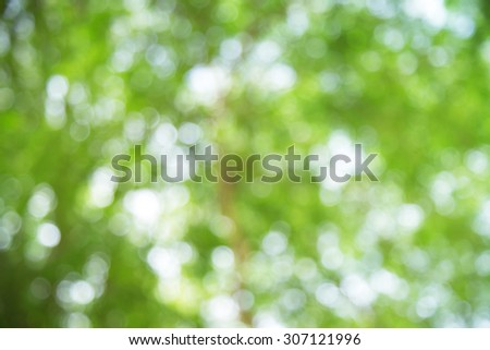 Spring or summer abstract background with bokeh lights - stock photo