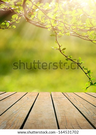 spring leaf table spring wood stock images royalty free images vectors shutterstock