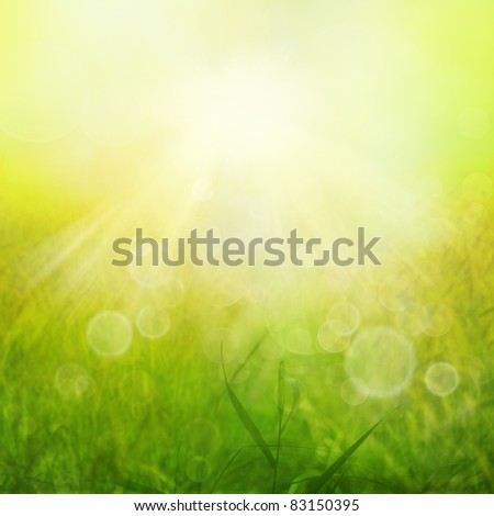Spring or summer heat abstract nature background with grass in the meadow and sunset with sun beams and bokeh lights in the back. View over field into sunshine