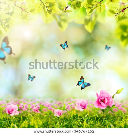 Spring or summer season abstract nature background with butterflies, green grass and leaves - stock photo