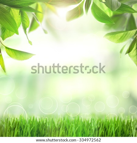 Spring or summer season abstract nature background with green grass and leaves - stock photo