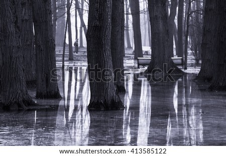 Spring Park in the city with trees and huge puddles, reflection of trees in water, people walking to the bench, photography in black and white - stock photo