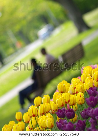 Spring park, tulips in foreground, two people resting on the bench