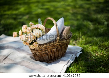 Spring picnic in a park - stock photo