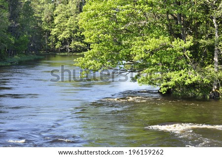 Spring river surrounded by green trees - stock photo