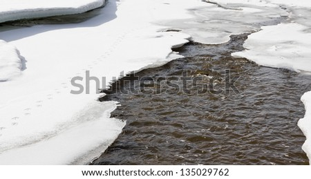 Spring runoff from melting snow raises the water level of streams, rivers and lakes. Duck tracks on thin ice. - stock photo