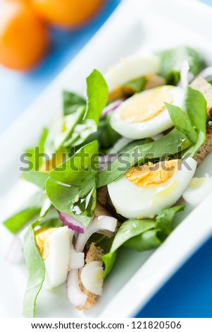 spring salad with spinach and egg, food close-up - stock photo