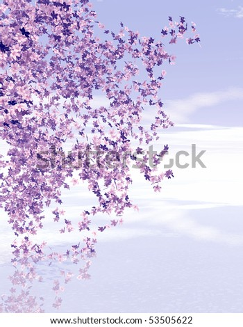 Spring scene. Blossoming cherry trees - stock photo
