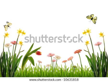 Spring scenery, isolated