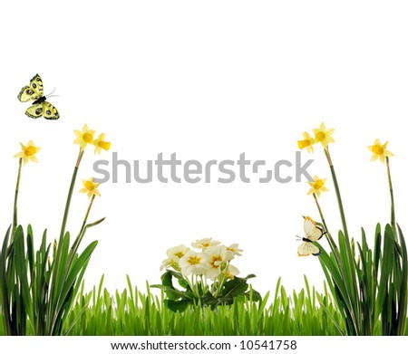 Spring scenery with flowers and butterflies