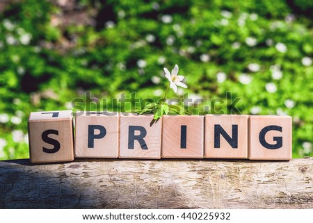 Spring sign on timber in a green forest - stock photo