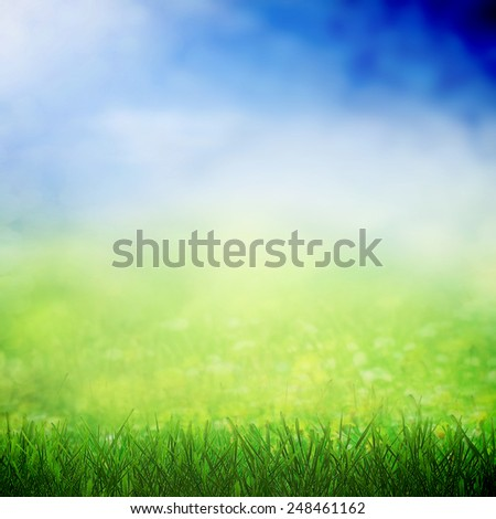 Spring sky with sunny field with grass field - stock photo