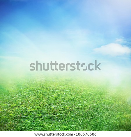 Spring sky with sunny field with growing flowers and grass - stock photo