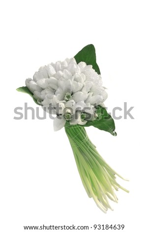 Spring snowdrop flowers bouquet isolated on white