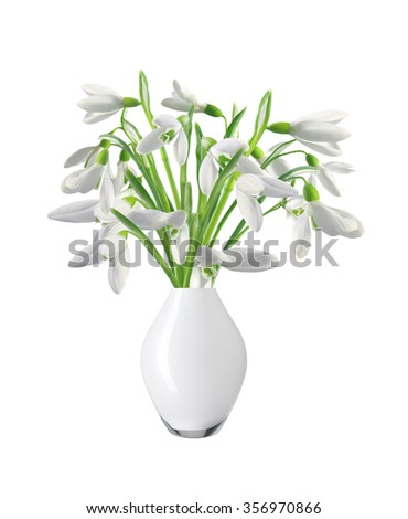 Spring snowdrops in vase isolated on white background - stock photo