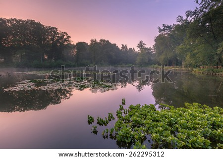 Spring source pond in Natura 2000 Nature reserve Springendal on a foggy morning in August - stock photo