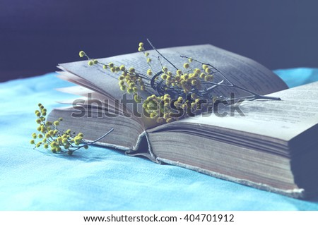 Spring still life - Open old book lying on the blue linen tablecloth with yellow mimosa flowers.  Blue pastel processing. Selective focus at the book spine.   - stock photo