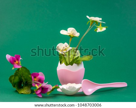 Spring still life with flower growing out of an eggshell