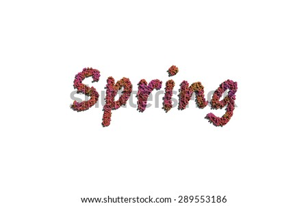 spring text flower with white background concept of typography - stock photo
