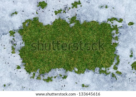 Spring thaw frame with meting cold white snow disappearing and exposing green grass underneath the frosted ice with a blank area for copy space as a symbol of renewal and springtime concept. - stock photo