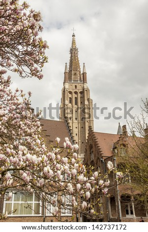 Spring time blossom tree. Our Lady Church - Brugge, Belgium. - stock photo