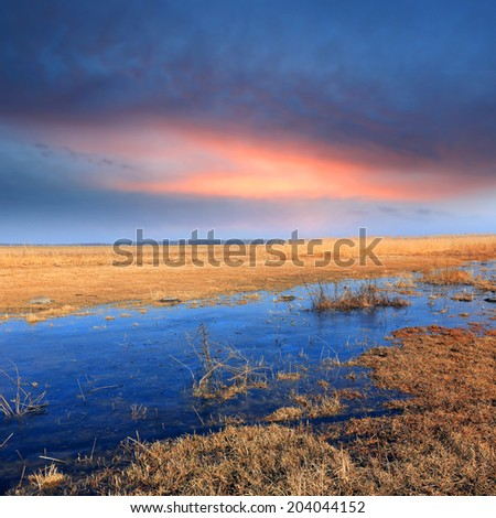 Spring time on flooded meadow against evening sky
