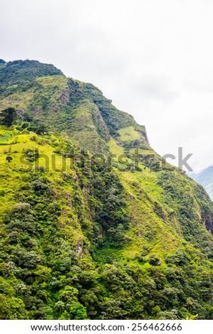 Springs and nature of Banos de Agua Santa (Baths of Holy Water), Ecuador - stock photo