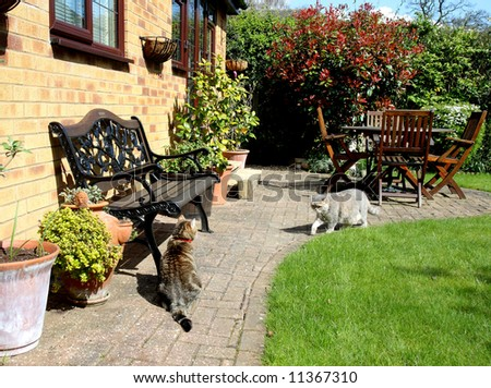 Springtime in an back garden in England with seating and Patio area and two pet Cats - stock photo