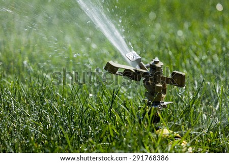 sprinkler grass automatic watering - stock photo