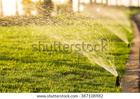 sprinkler head watering the bush and grass in the garden - stock photo