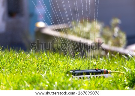 Sprinkler in garden - stock photo