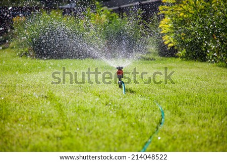 Sprinkler in garden watering the lawn - stock photo