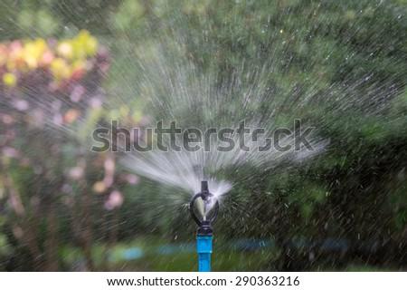 sprinkler in the garden  - stock photo