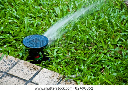 sprinkler in yard - stock photo