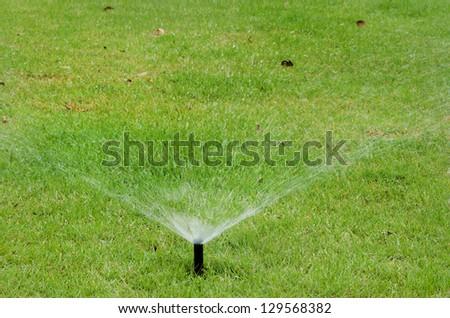 sprinkler on green grass - stock photo