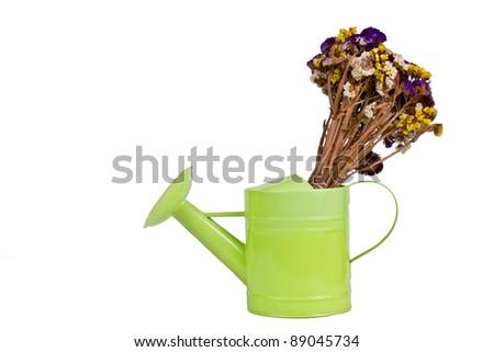 sprinkler with foliage decoration isolated on white - stock photo