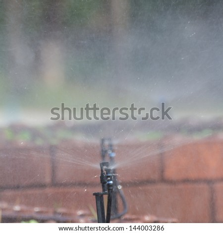 Sprinklers are spraying water in farm - stock photo