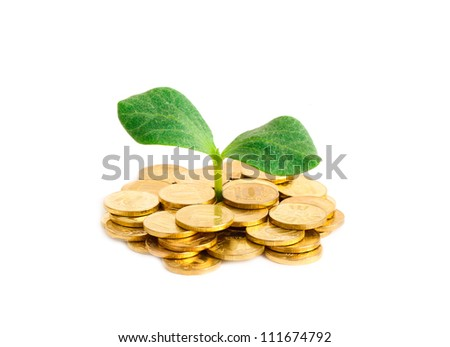 Sprout in coins isolated on a white background - stock photo