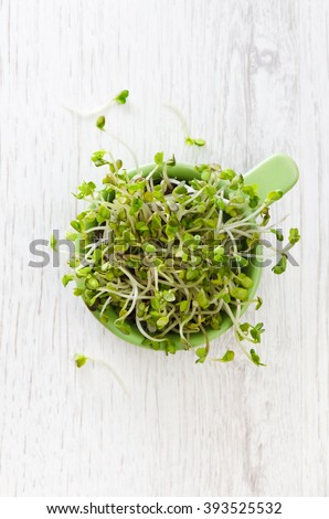 sprouted radish seeds in a ceramic bowl on the wooden table
