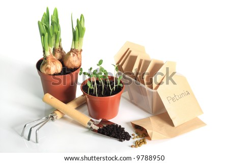Sprouting bulbs, seedlings, seeds and garden tools