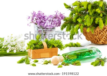 Spruce needle bad, Medicinal plants, aromatic plants  - stock photo