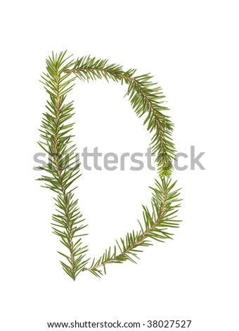 Spruce twigs forming the letter 'D' isolated on white - stock photo