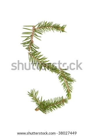 Spruce twigs forming the letter 'S' isolated on white - stock photo