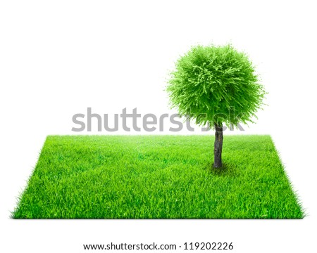 Square of green grass field and tree on it over white background - stock photo