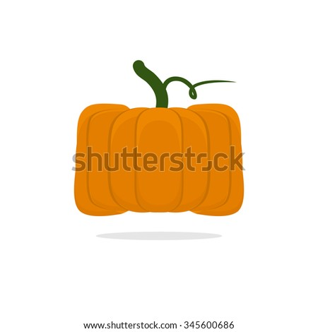Square pumpkin. Unusual Vegetable for Halloween. Vegetable fruit cubic form - stock photo