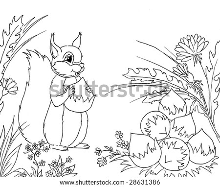 Squirrel Coloring Pages Stock Snimky Snimky Pro Cleny