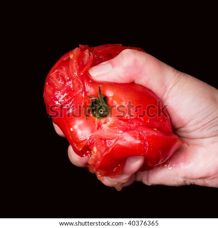 Squished Tomato - stock photo