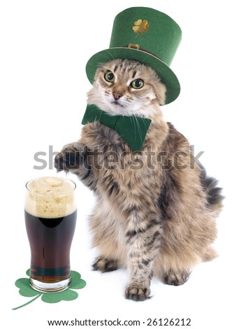 St. Patrick's day - stock photo
