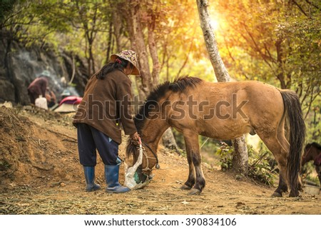 Stableboy - stock photo